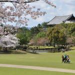 Nara i Sakura