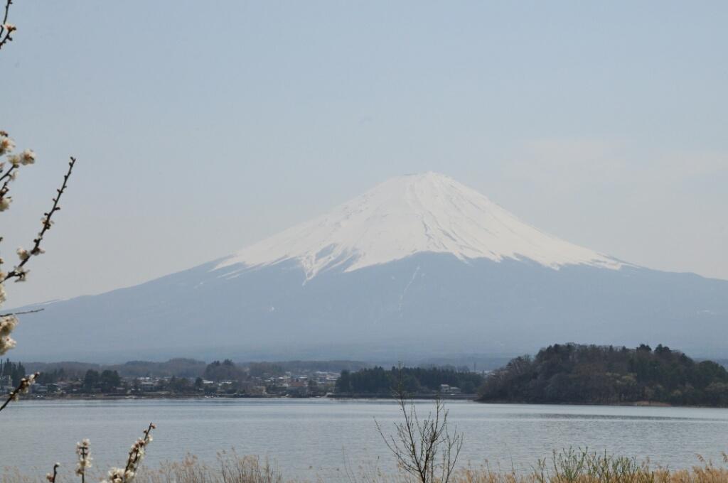 Gora Fuji